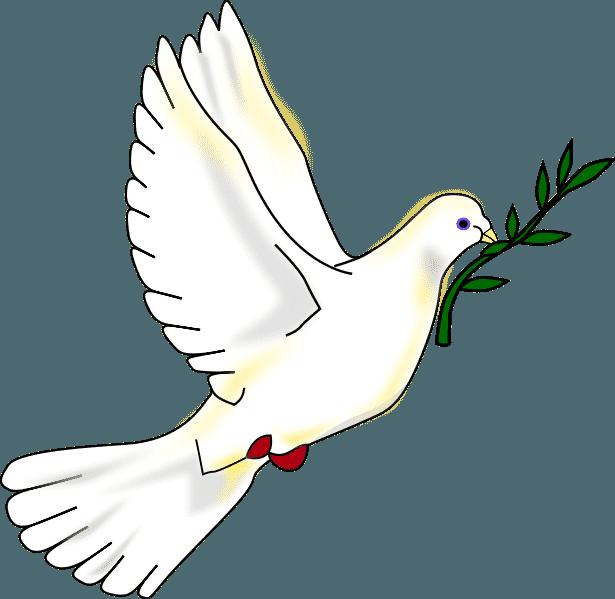 Education la paix à l'école privée l'Eau Vive de Migné Auxances (86)