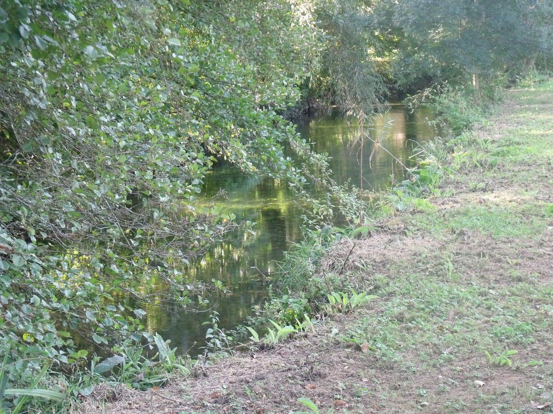 Actualités - CP/CE1 - Blog de l'école Eau Vive de Migné près de Poitiers